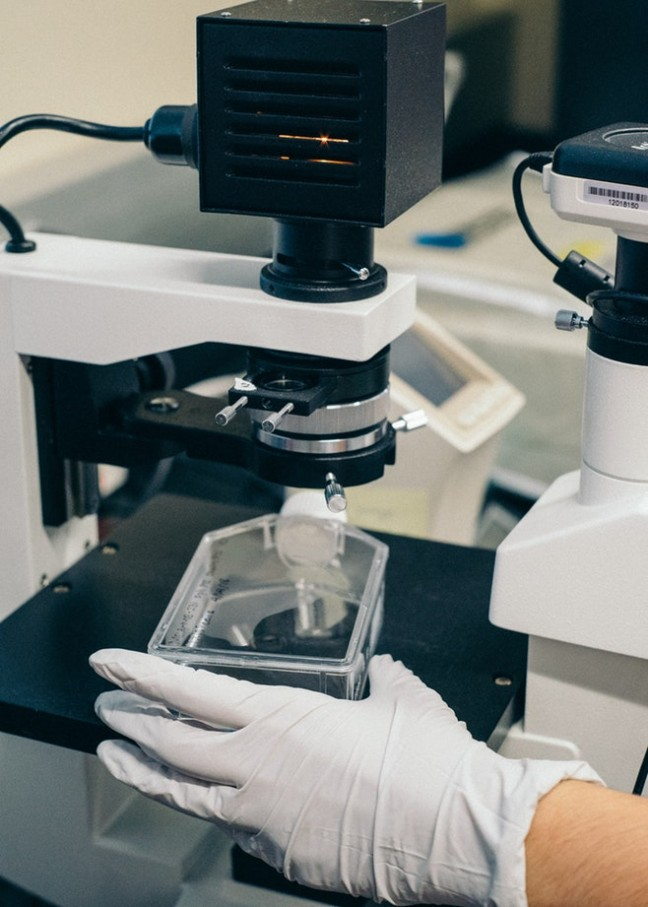 Badania nasienia pod mikroskopem